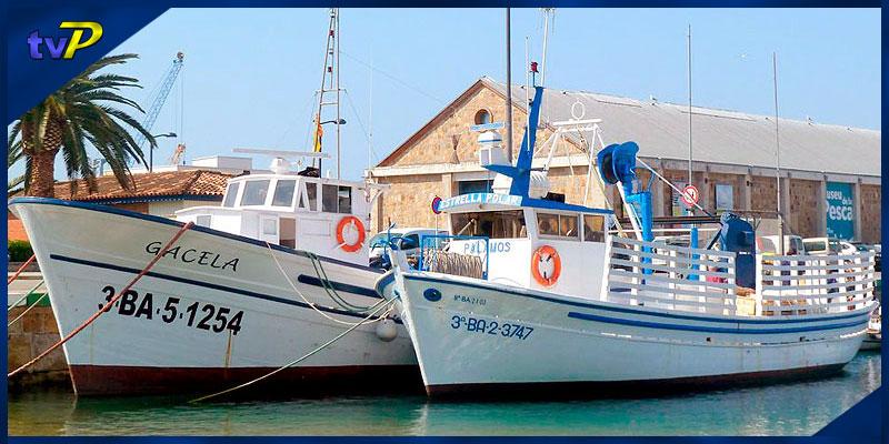 Les Barques del Peix (v.guiada)