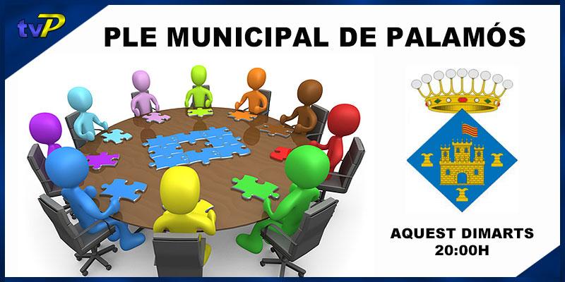 x-cartell-ple-municipal-de-palamos-vep01-agenda-de-palamos